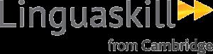 ¿Qué es LinguaSkill? 2